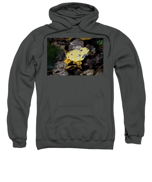 Sweatshirt featuring the photograph Gold And Diamons by Stephen Holst