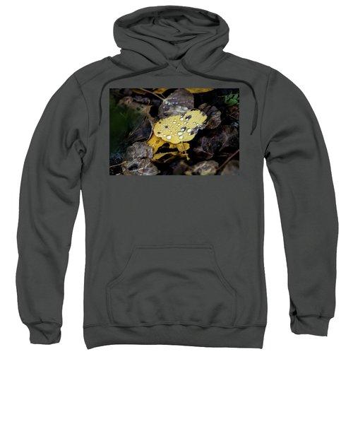 Gold And Diamons Sweatshirt