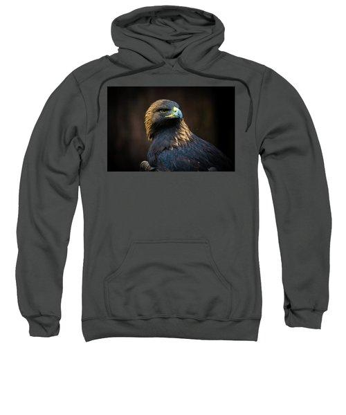 Golden Eagle 3 Sweatshirt