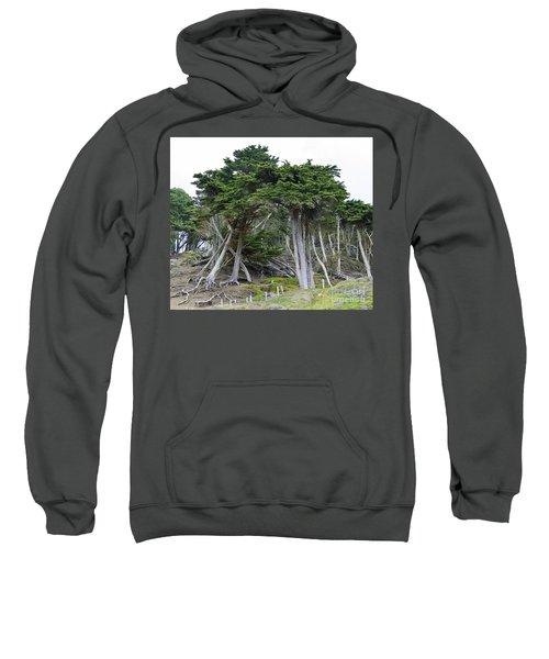 Golden Gate Sentinels Sweatshirt