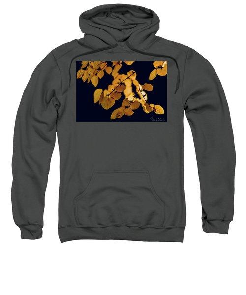 Golden Sweatshirt