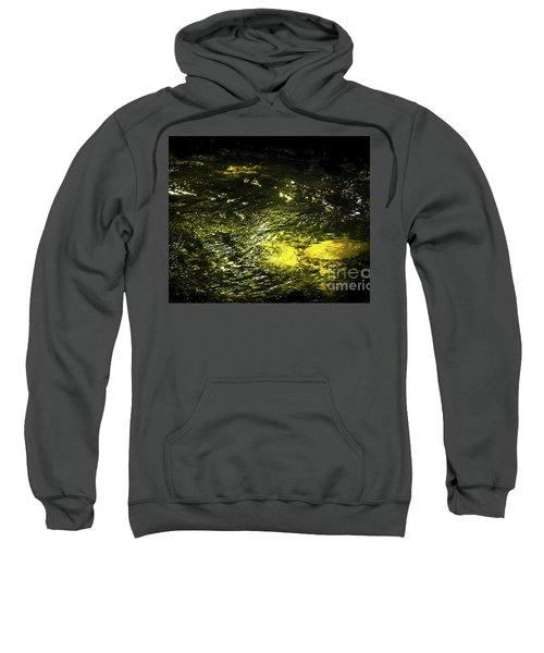Golden Glow Sweatshirt by Tatsuya Atarashi