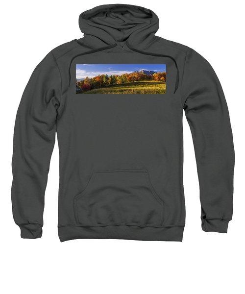 Golden Meadow Sweatshirt