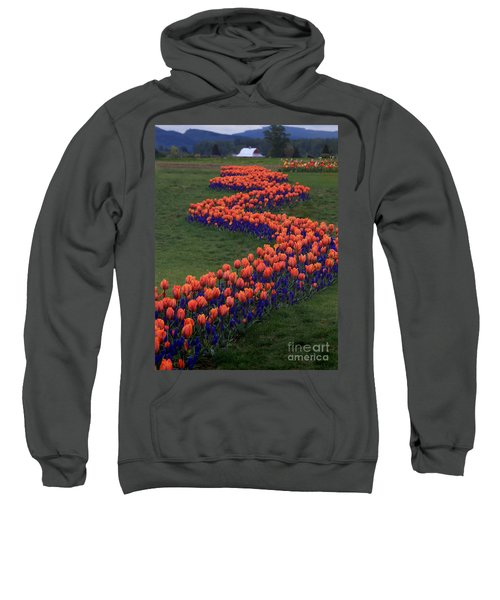 Sweatshirt featuring the photograph Golden Thread by Peter Simmons