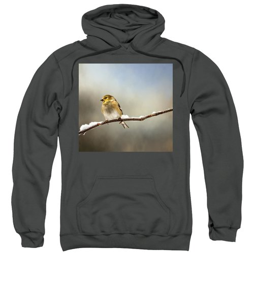 Goldfinch After A Spring Snow Storm Sweatshirt