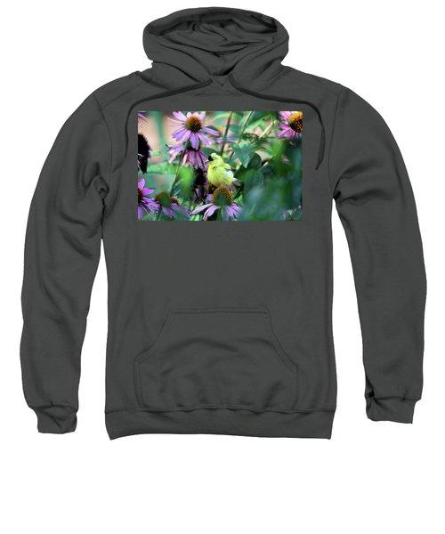 Goldfinch On Coneflowers Sweatshirt