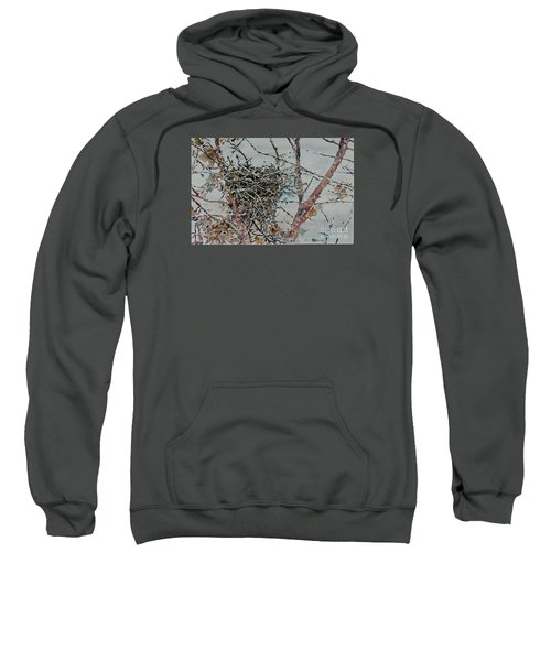 Gone South Sweatshirt