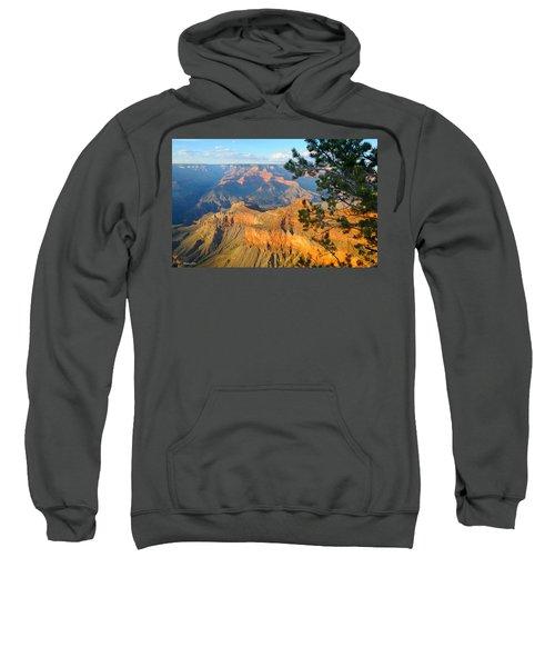 Grand Canyon South Rim - Pine At Right Sweatshirt