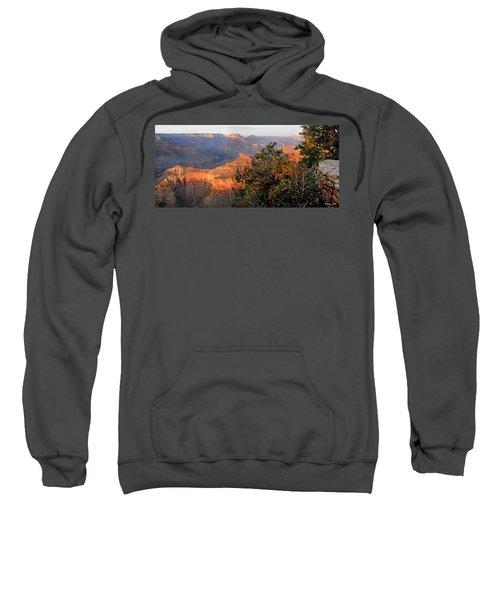 Grand Canyon South Rim - Red Berry Bush Along Path Sweatshirt