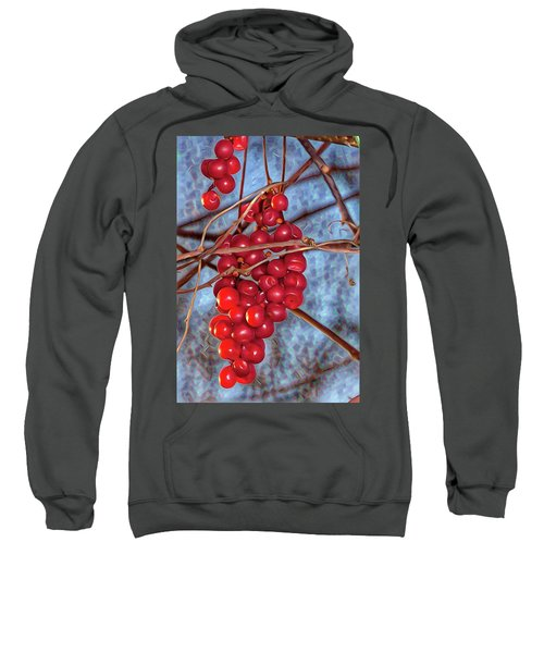 Grapes Schisandra Autumn Sweatshirt