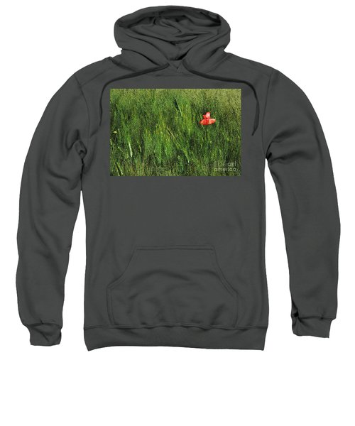 Grassland And Red Poppy Flower 2 Sweatshirt