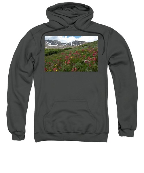 Gray's And Torreys Sweatshirt