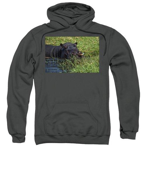 The Hippo And The Jacana Bird Sweatshirt