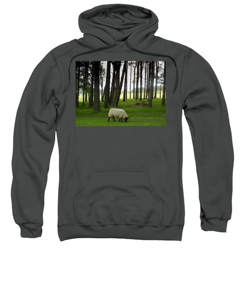 Grazing In The Woods Sweatshirt