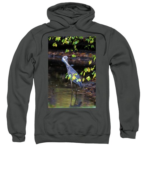 Great Blue Heron With An Itch Sweatshirt