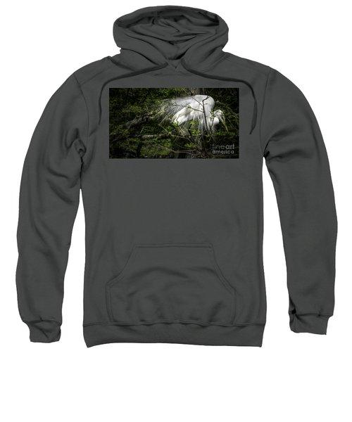 Great Egret #2 Sweatshirt