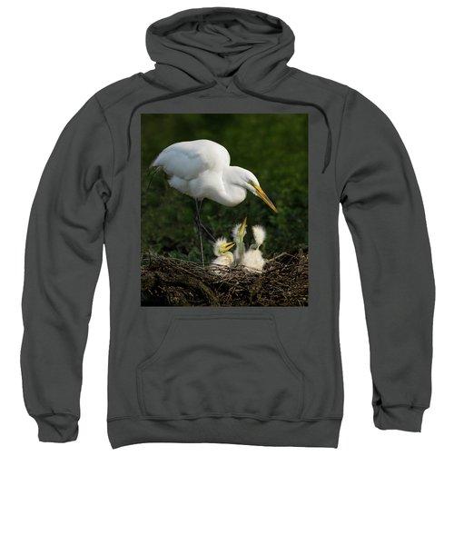 Great Egret With Chicks Sweatshirt