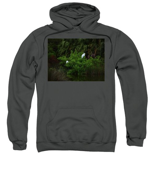 Great Egrets Sweatshirt
