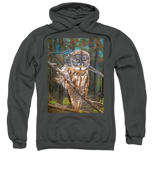 Great Grey Owl 2 Sweatshirt