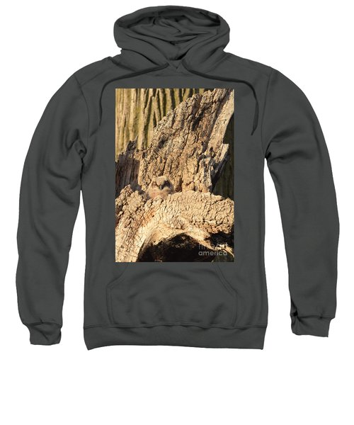Great Horned Owlet Two Sweatshirt