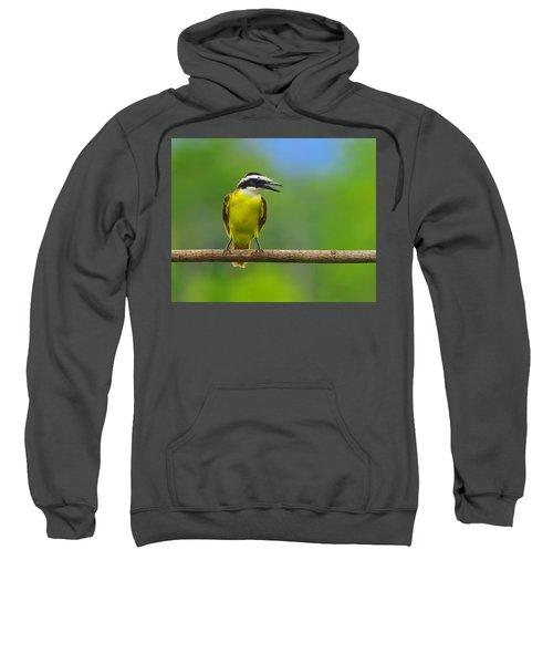 Great Kiskadee Sweatshirt by Tony Beck