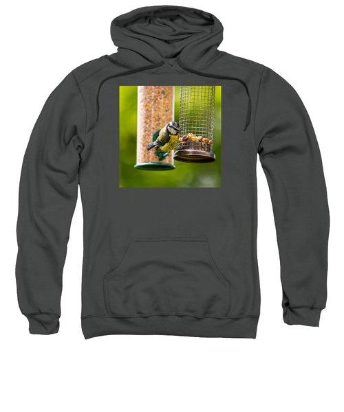 Great Tit Sweatshirt