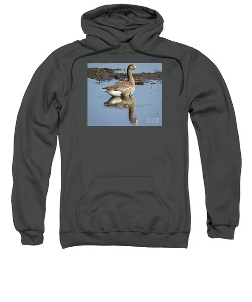 Sweatshirt featuring the photograph Great White Fronted Goose by Ricky L Jones