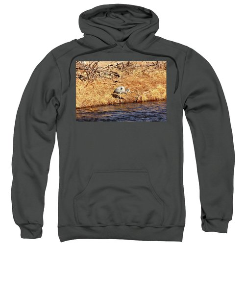 Greatblueheron1 Sweatshirt