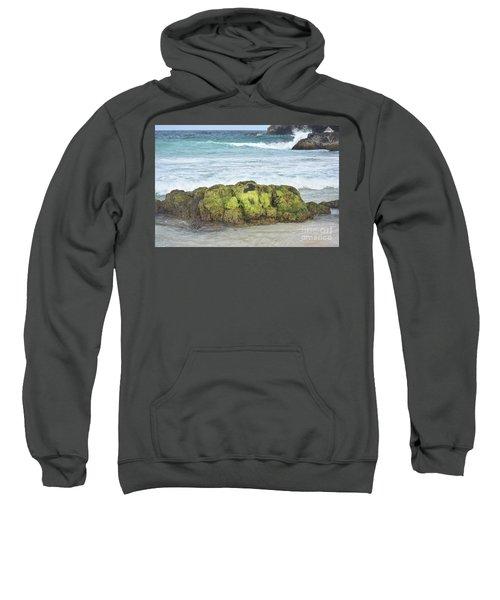 Green Algae Covered Rock On A Beach In Aruba Sweatshirt