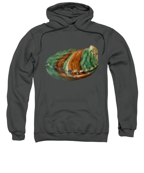 Green And Brown Shell Transparency Sweatshirt
