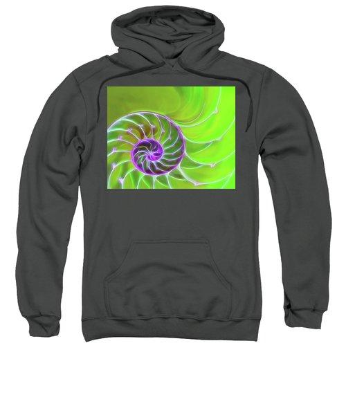 Green And Purple Spiral Sweatshirt