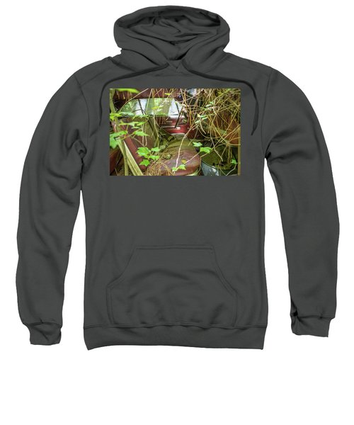 Green And Red Sweatshirt