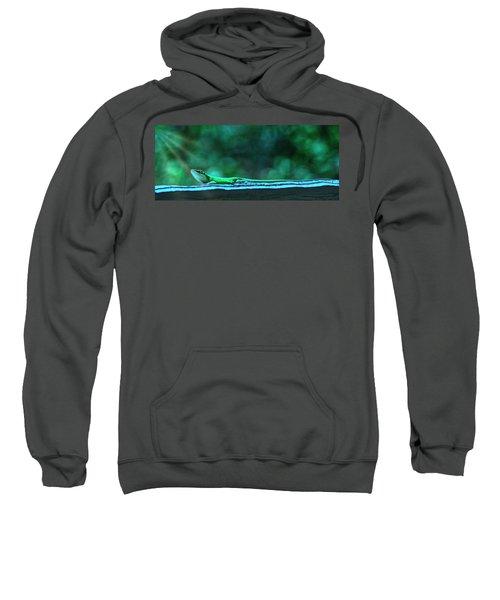 Green Anole Lizard Sweatshirt