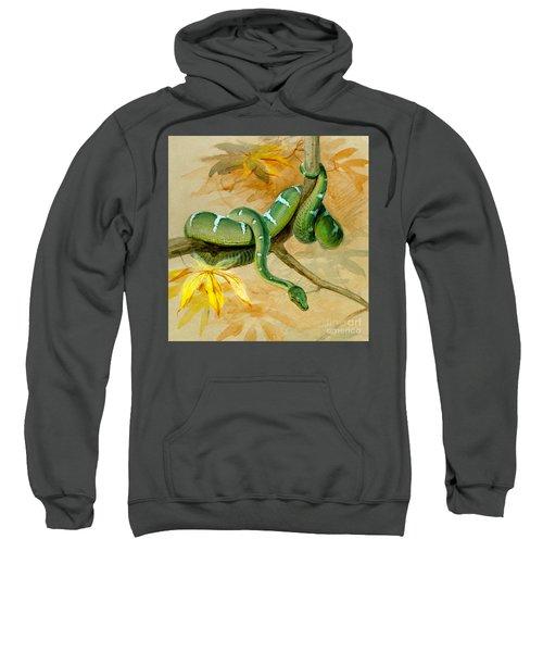 Green Boa Sweatshirt