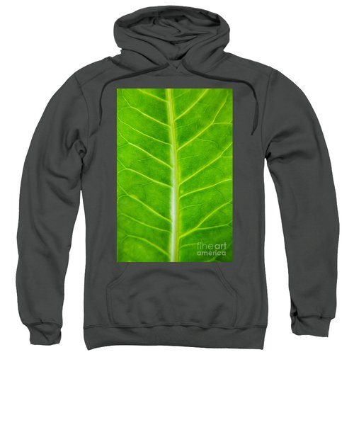 Green Botany -  Part 2 Of 3 Sweatshirt