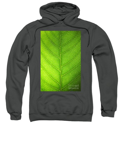 Green Botany -  Part 3 Of 3 Sweatshirt