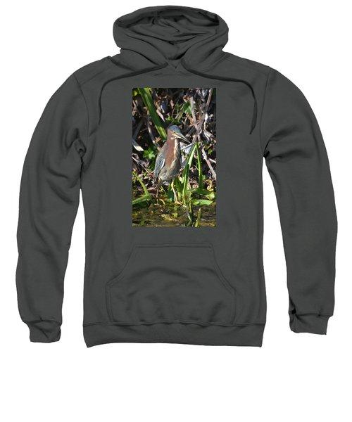 Green Heron Everglades Sweatshirt