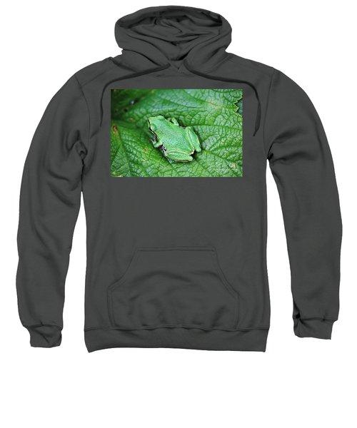 Green Like Me Tree Frog Sweatshirt