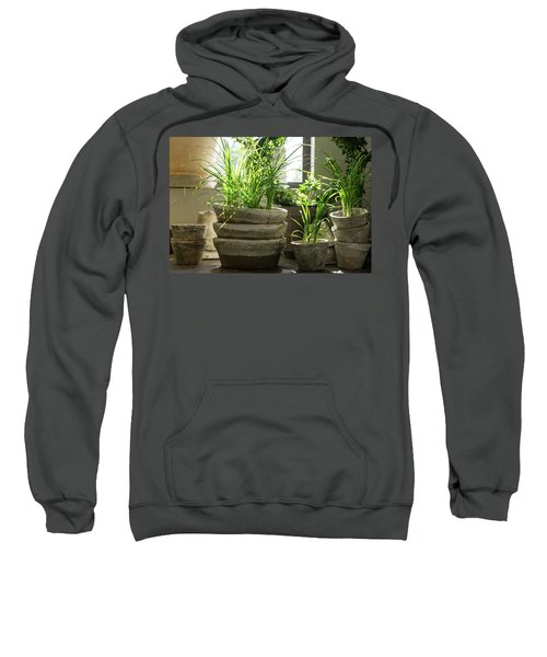Green Plants In Old Clay Pots Sweatshirt