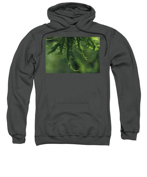 Flavorofthemonth Sweatshirt