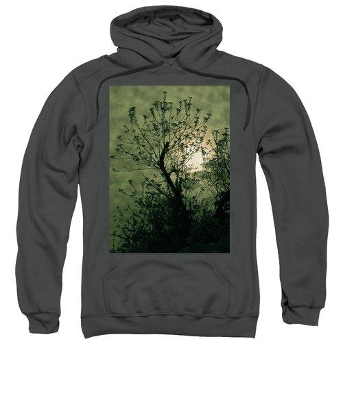 Green Sunset Sweatshirt