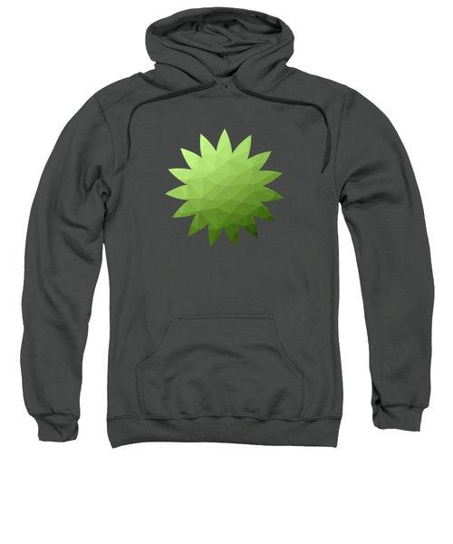 Greenery Ombre Gradient Geometric Mesh Sweatshirt
