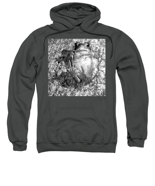 Gregoree The Stranded Frog Sweatshirt