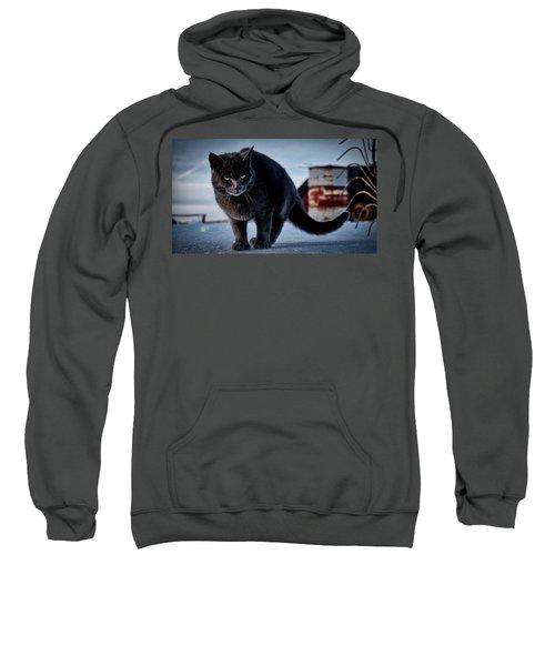 Grey Cat, Grey Mood Sweatshirt