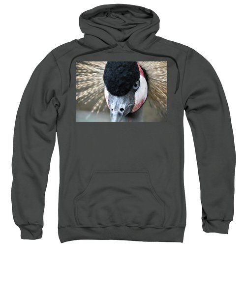 Grey Crowned Crane Sweatshirt