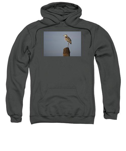 Grey Heron Sweatshirt