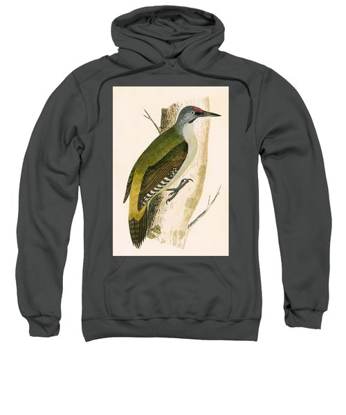 Grey Woodpecker Sweatshirt by English School