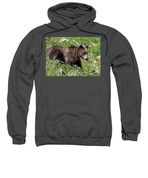 Grizzly Cub  Sweatshirt