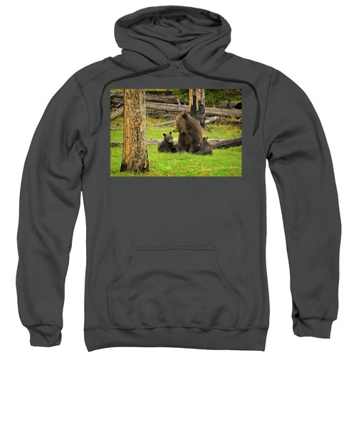 Grizzly Family Gathering Sweatshirt