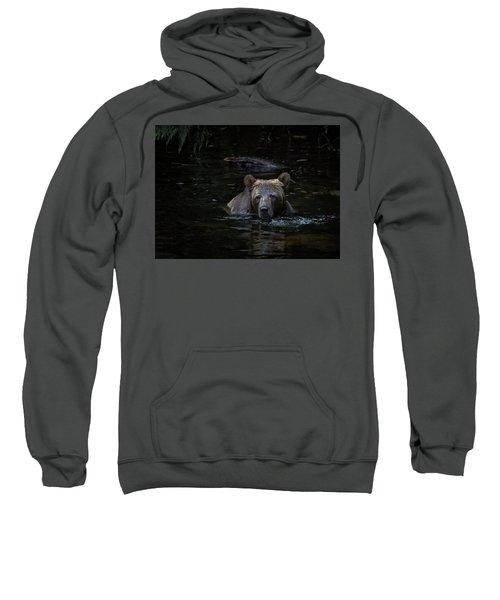 Grizzly Swimmer Sweatshirt